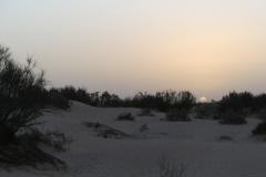 Sahara_Extrem_2016_p1060402_31781249714_o