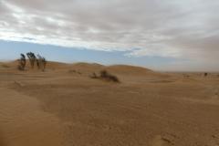 Sahara_Extrem_2016_p1060440_32584318396_o