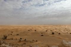 Sahara_Extrem_2016_p1060516_32471301382_o